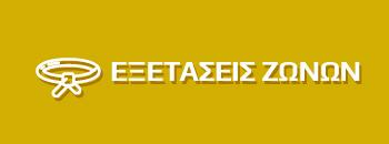 Belt exam banner